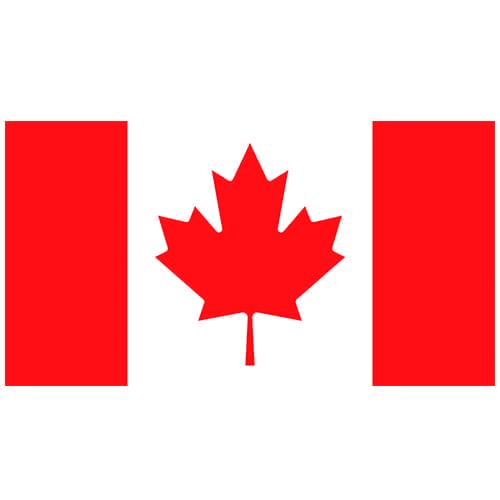 Vlag Canada 100 x 150cm