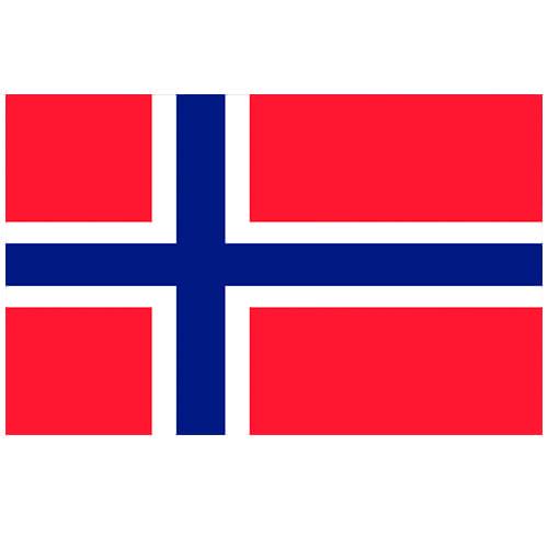 Vlag Noorwegen 100 x 150cm