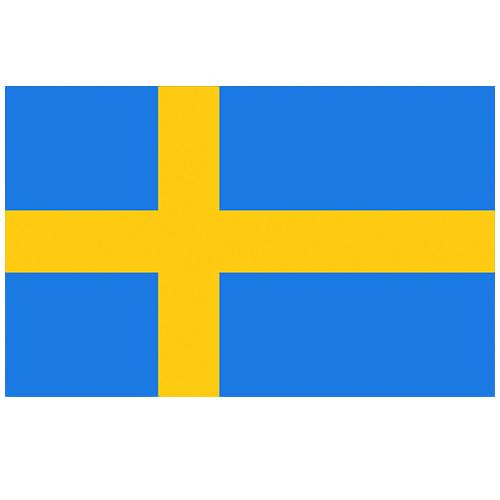 Vlag Zweden 100 x 150cm