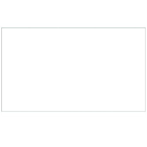 Vlag Wit 100 x 150cm